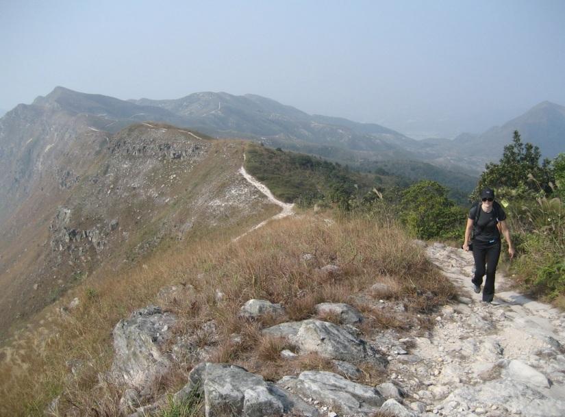 Wilson Trail 9-11