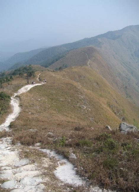 Wilson Trail 9-12