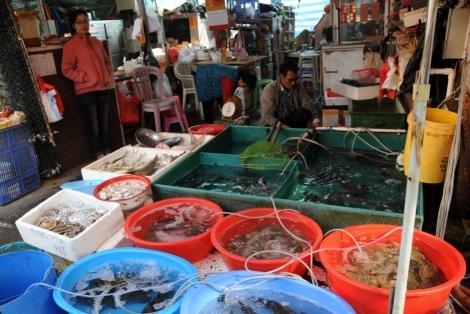 Tai O Village Lantau 4 Fresh Fish