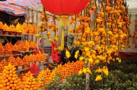 Victoria Park CNY Flower Market 2012-8