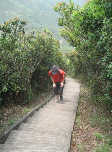 Wilson Trail 1-3