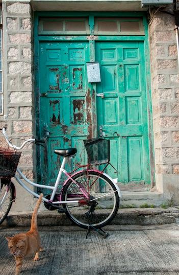 Peng Chau 10 green door, pink bike and cat