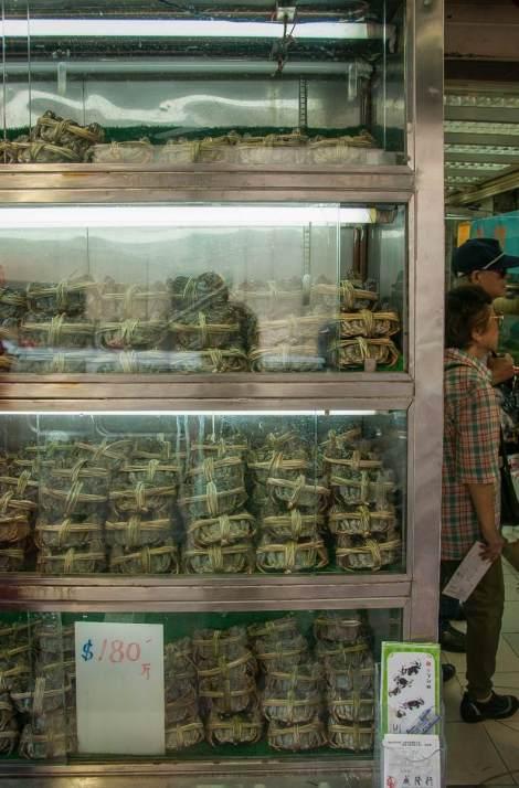 Hairy Crab Shop in Sheung Wan 4
