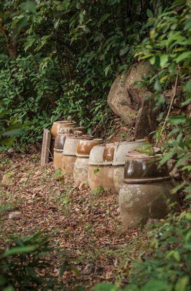 Lantau Trail 10-2 urns