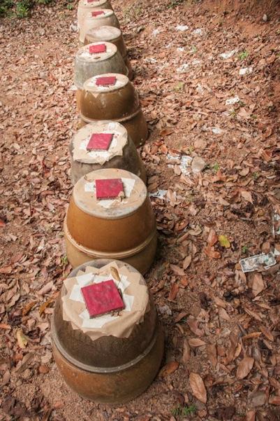 Lantau Trail 10-3 urns