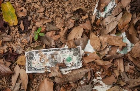 Lantau Trail 10-4 paper money