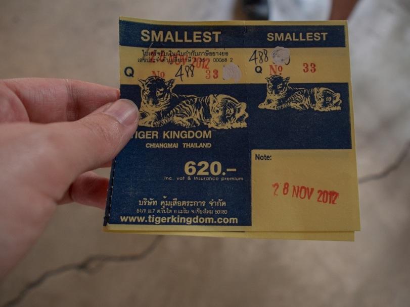 Chiang Mai Tiger Kingdom 1 Ticket