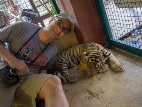 Chiang Mai Tiger Kingdom 5