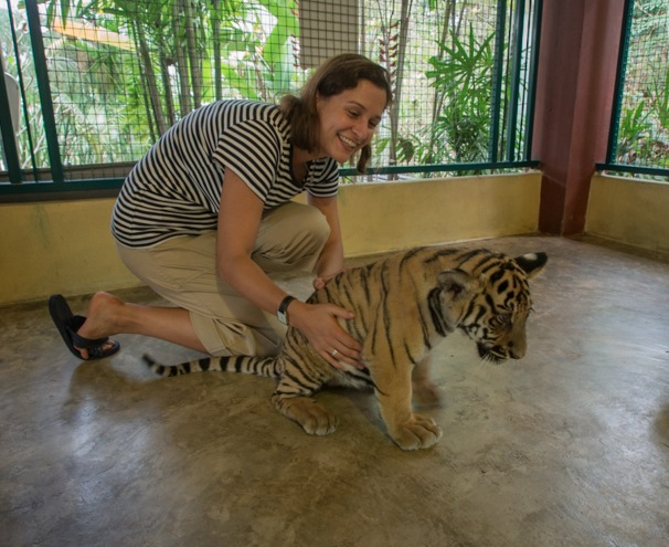 Chiang Mai Tiger Kingdom 7