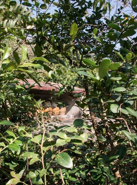 Lantau Trail Stage 11-6 Urn Shrine