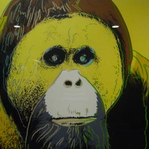 Andy Warhol Orang Utan