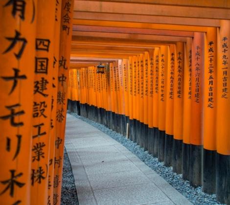 Fushimi Inari Kyoto 6