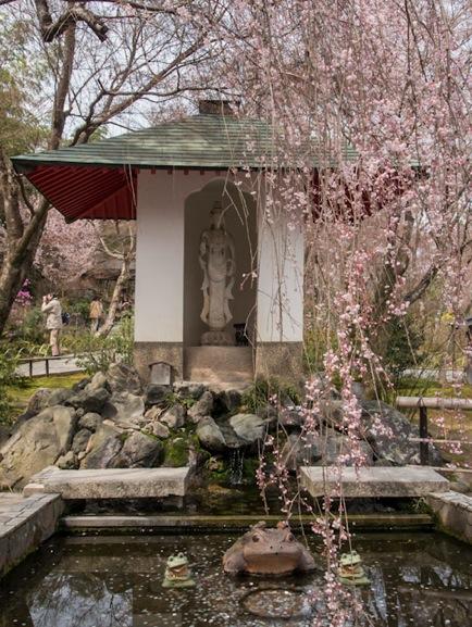 Tenryuji Temple in Arashiyama 3