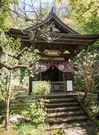 Engaku-ji Temple Kamakura 5