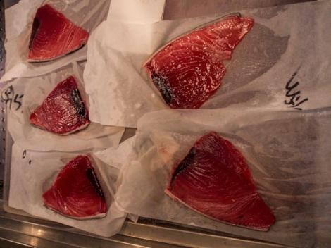 Tuna at Tsukiji FIsh Market 12