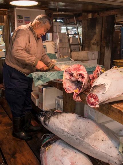 Tuna at Tsukiji FIsh Market 3