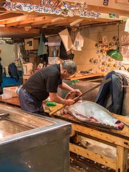 Tuna at Tsukiji FIsh Market 4