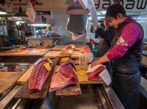 Tuna at Tsukiji FIsh Market 9