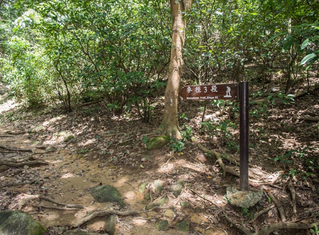 MacLehose Trail Stage 3-2