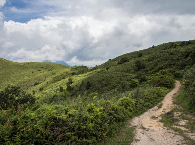 MacLehose Trail Stage 3-6