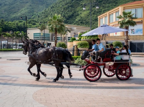 DB Auberge Horse Carriage