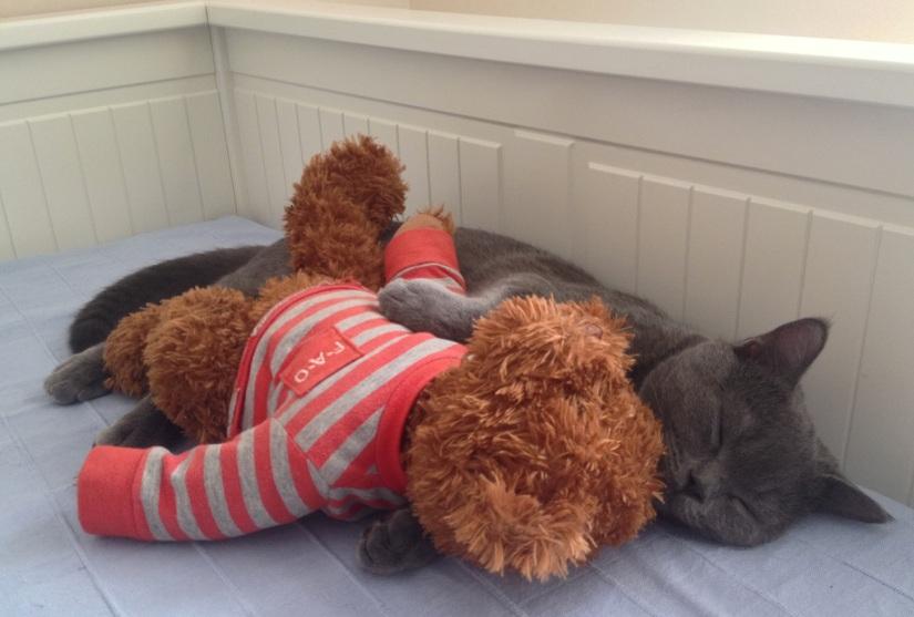 Sam sleeping with Max 8.9