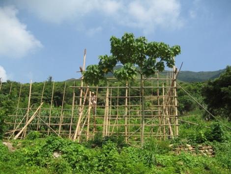 Shek Pik to Tai O Lantau Hike Hong Kong 9 Yi O Bamboo Scaffolding
