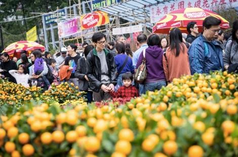 Victoria Flower Market 0 kid with dad