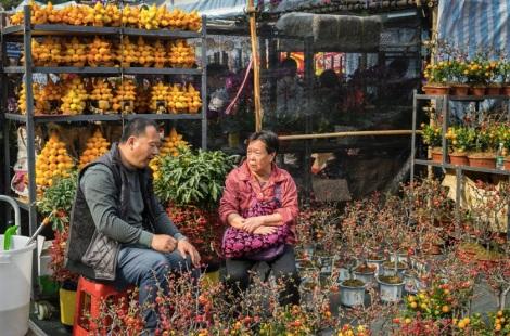 Victoria Flower Market 2 little chat