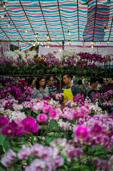Victoria Flower Market 5 orchids