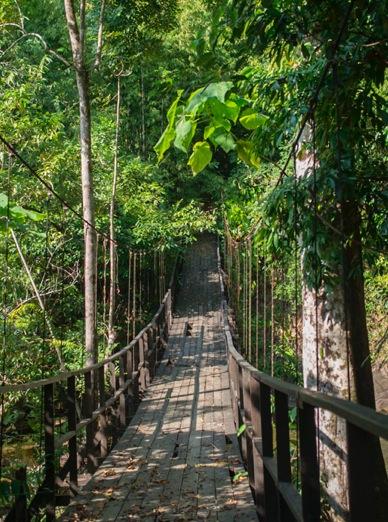 Waterfall Khao Lak 1