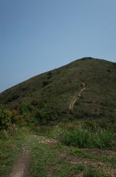 Wilson Trail 4-5