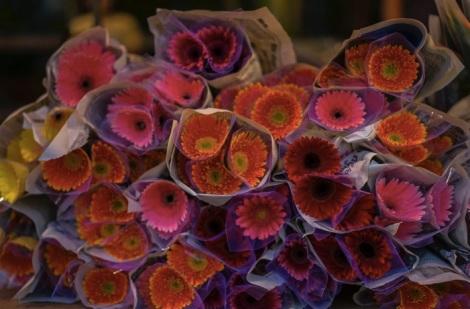 Hanoi Flower Market 0