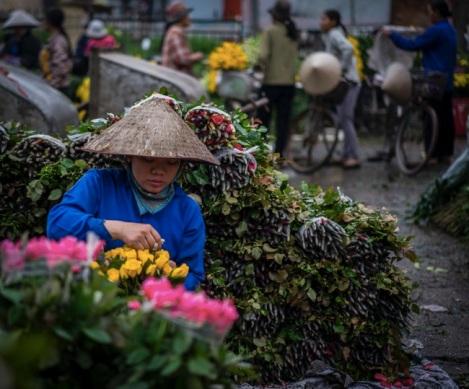 Hanoi Flower Market 12