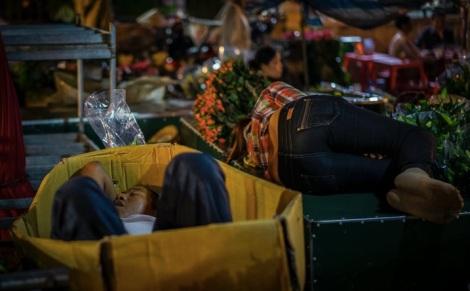 Hanoi Flower Market 8