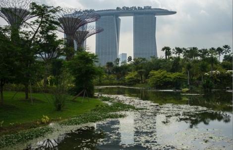 Marina Bay Sands 4