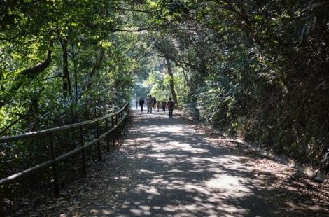 Aberdeen Nature Trail 2
