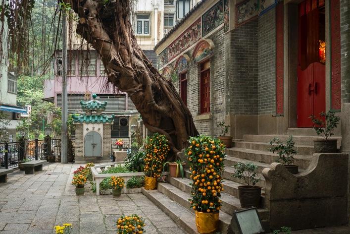Pak Tai Temple 1