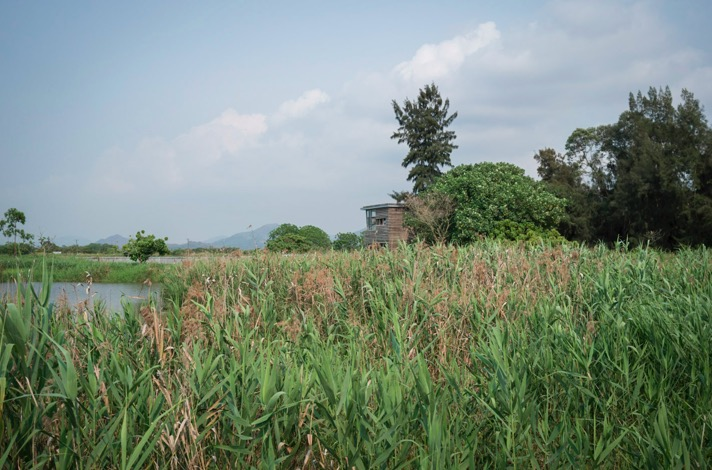 Hong Kong Wetlands Park 6