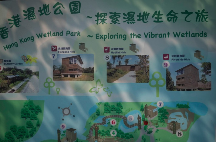 Hong Kong Wetlands Park 7