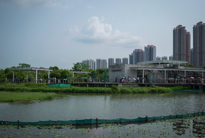 Hong Kong Wetlands Park 8