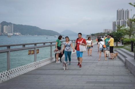 Walk from Shau Kei Wan to Quarry Bay 11
