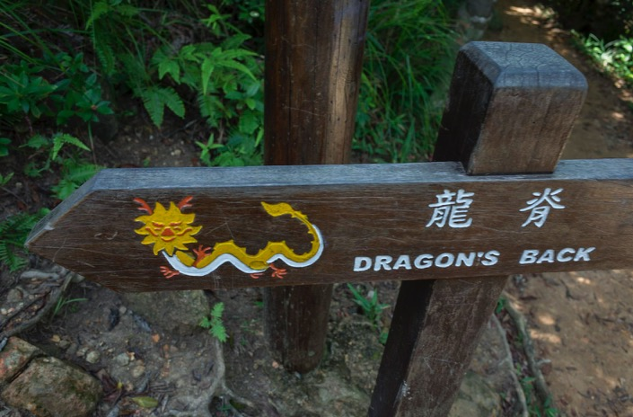 Dragon's Back Hike August 2015-0