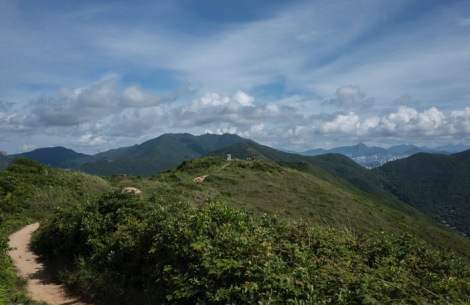 Dragon's Back Hike August 2015-8
