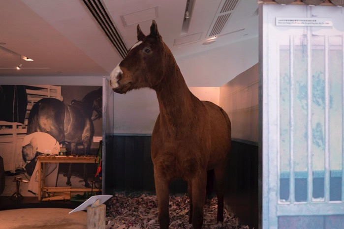 The Hong Kong Racing Museum Sep 2015-4