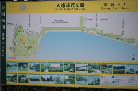 Tai Po Waterfront Park Sep 2015-1