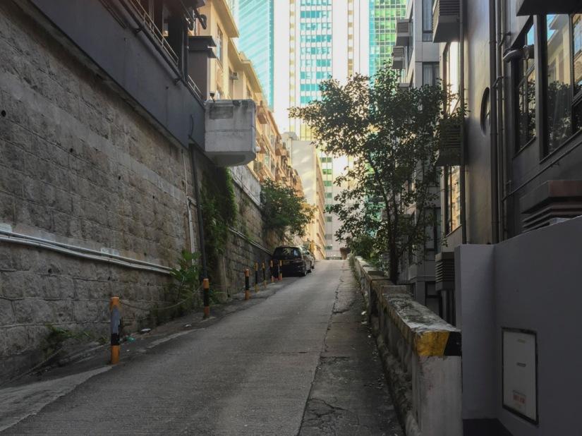 Fung Fai Terraces 1