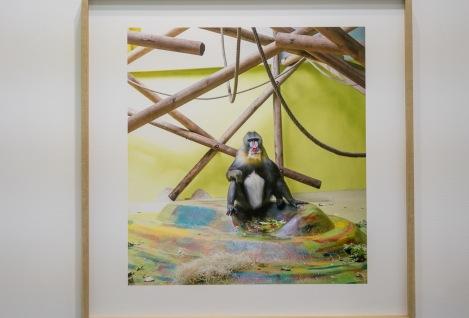 Art Central Hong Kong 2016-12 Eric Pillot