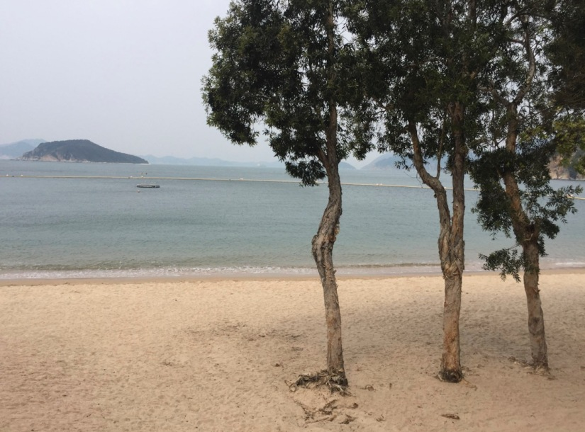 Chung Hom Kok Beach April 2016-5