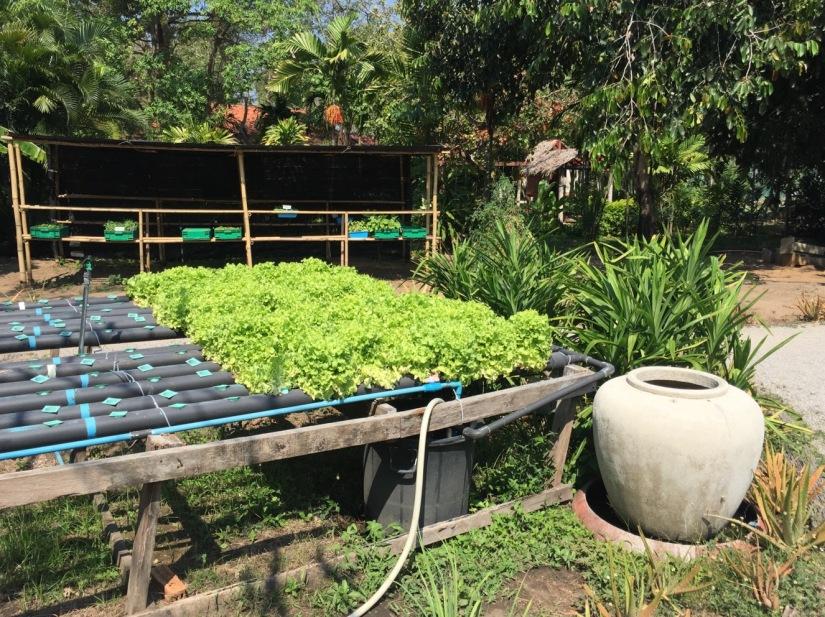 Evason Hua Hin Thailand March2016-4